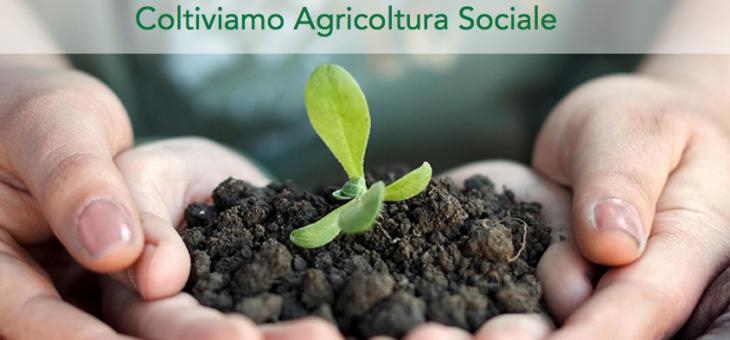 Coltiviamo Agricoltura Sociale: coltivare la rigenerazione sociale e l'azienda il CAVALIERE